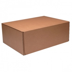 Mailing Box 460 x 340 x 175mm Brown (Pack of 20) 43383253
