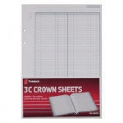 Rexel Twinlock Crown 3C F1 Double Ledger Refill Sheets (Pack of 100) 75841